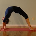Building a Personal Yoga Practice: The Integral Yoga Hatha Sequence